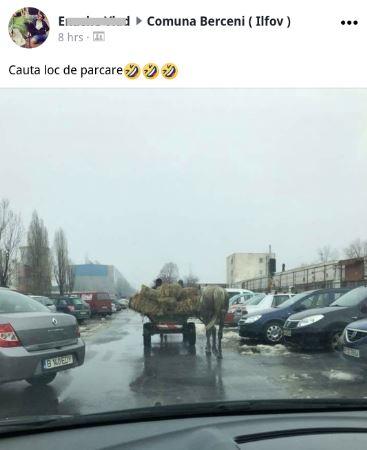 2018 03 29 - carute in capitala