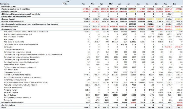 exemplu - subcategorii importante - 2017 - invatamant primar